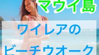 wailea-beachwalk